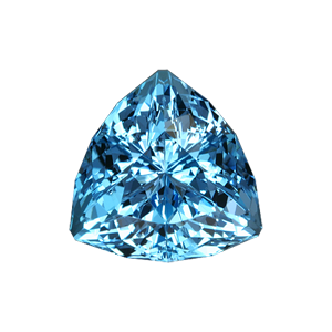 31.73 Ct Super Trillion Cut Blue Topaz ($1396)